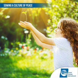 Sowing a culture of peace